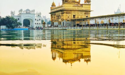 Maximizing Hilton points for 8-15 free nights in India!